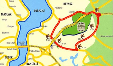 harita-1